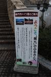 DSC_6097.jpg